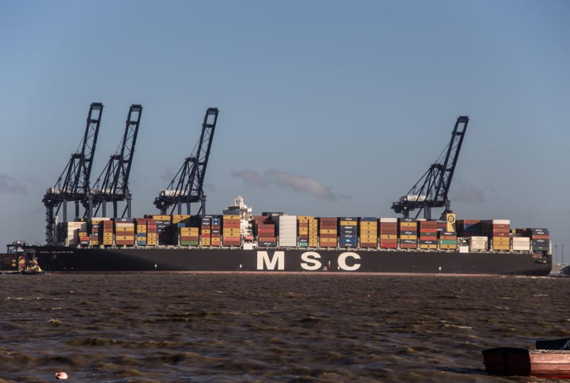 MSC Beatrice - big ship picture