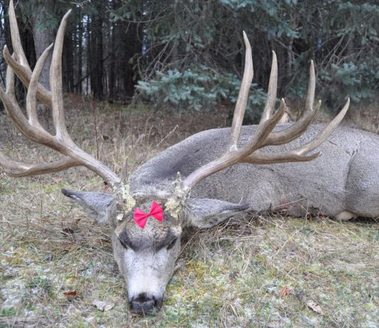 Largest Deer ever killed was done by a 5 year old Girl