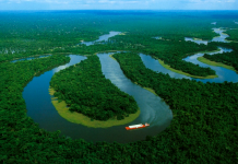 Amazon , biggest river in earth