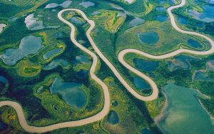 amazon river - from the space
